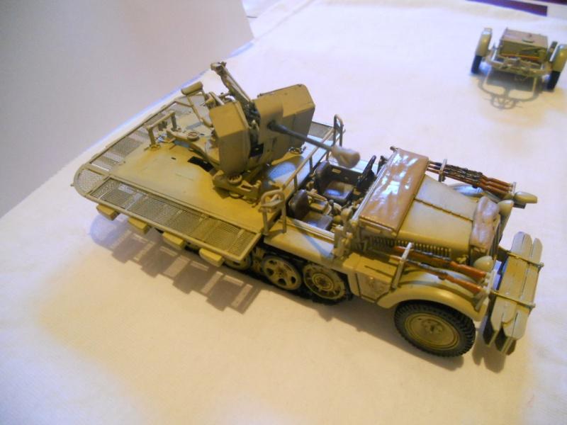 Sdkfz - 10/4 with flak (peinture en cours) Dscn7121