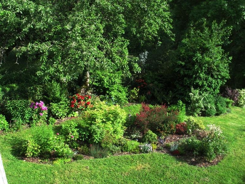 Mon petit jardin, une autre passion :) Img_0096