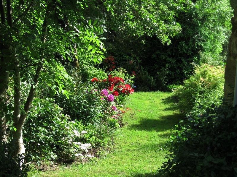 Mon petit jardin, une autre passion :) Img_0097