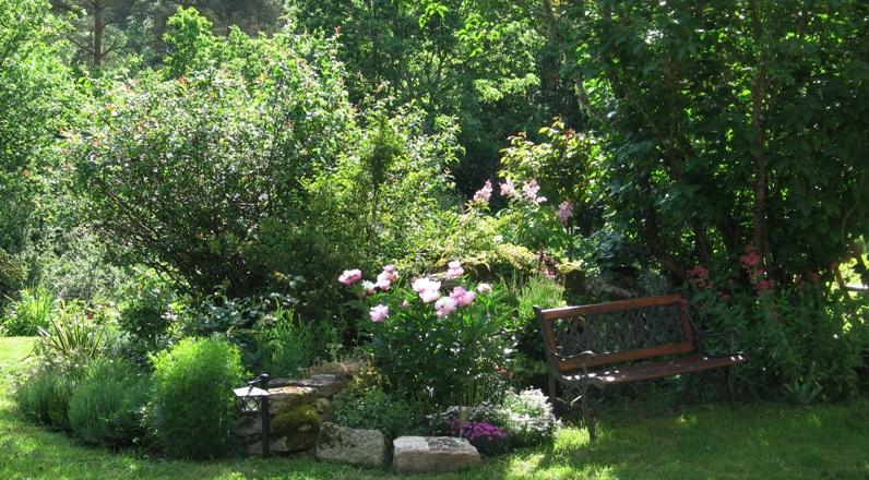 Mon petit jardin, une autre passion :) Img_0098