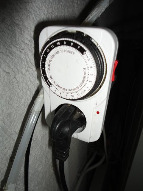automatisation changement d eau Dsc01819