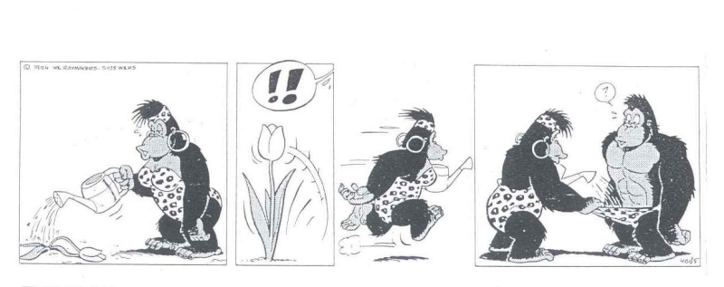 Ventoux se lâche ..... et fait des émules - Page 2 Gorill10