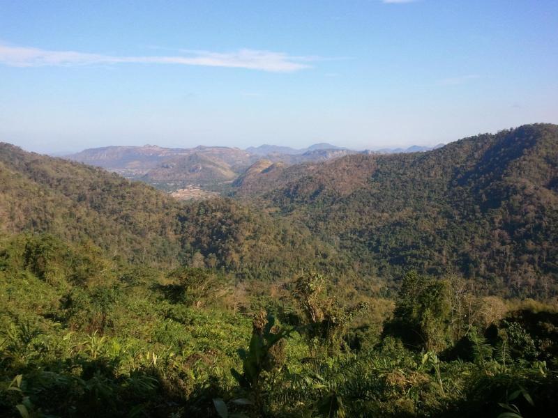 Thailande - Découvrir Khao Sok et autres parcs nationaux Thaina10