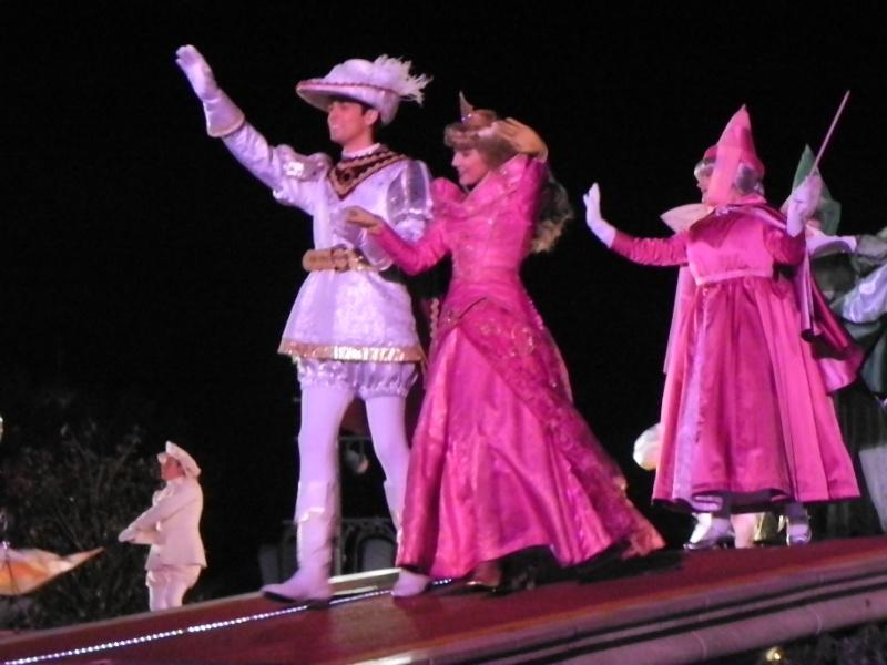 Le voeu de Noël de la princesse aurore - Page 3 Dscn7610