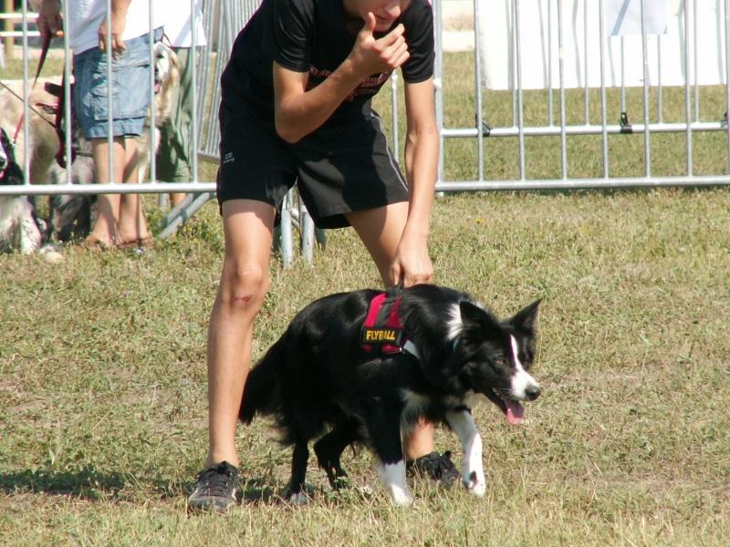 Finale GPF 2011 à Avigon  Pict0026