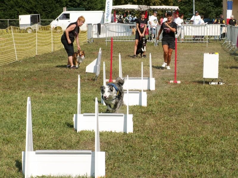 Finale GPF 2011 à Avigon  Pict0238