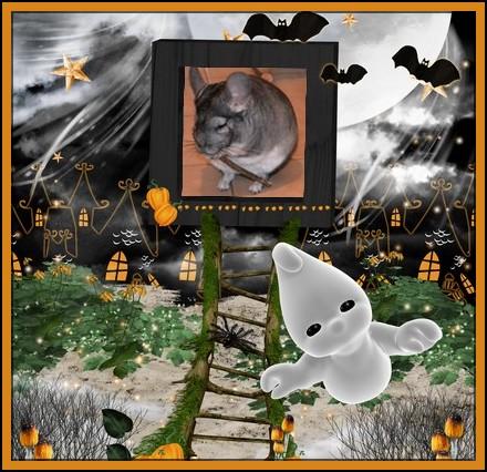 Concours Halloween jusqu'au 20 novembre B144610