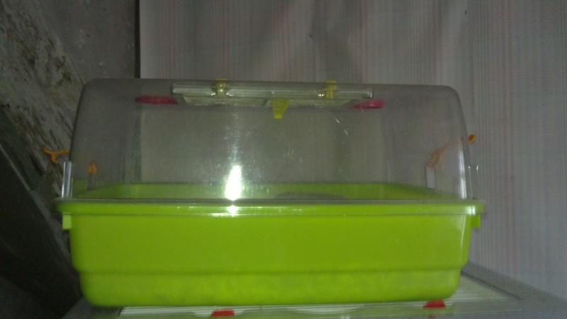 vente cages plexi, 89 10012023