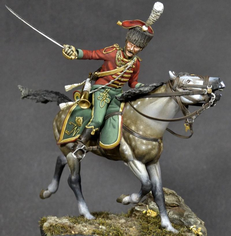 Westphalian light horse _dsc1410