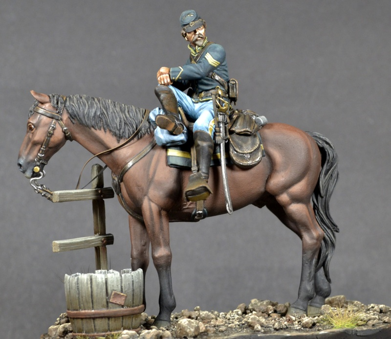 Union Cavalry sergent _dsc1416