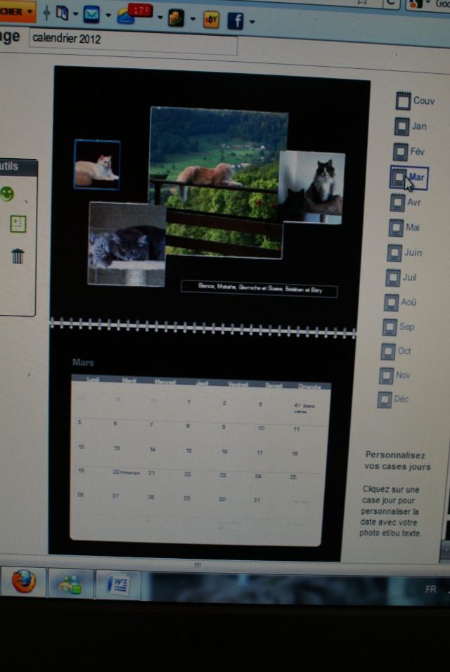 Calendrier 2012.... Ebauche! - Page 2 Dsc05110