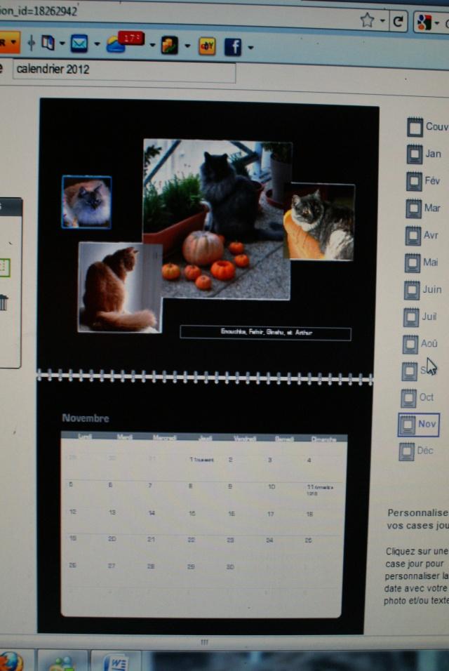 Calendrier 2012.... Ebauche! - Page 2 Dsc05112