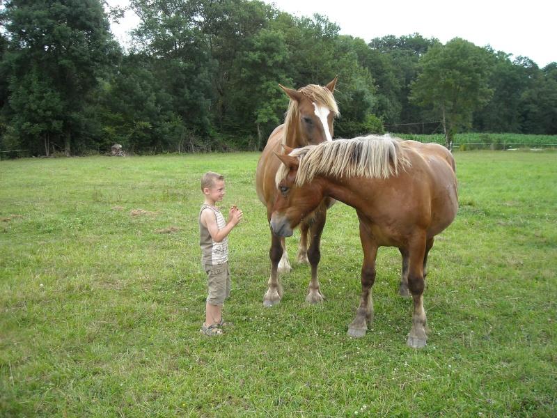 Thème de novembre: Le cheval et l'humain, en toute complicité - Page 4 07912
