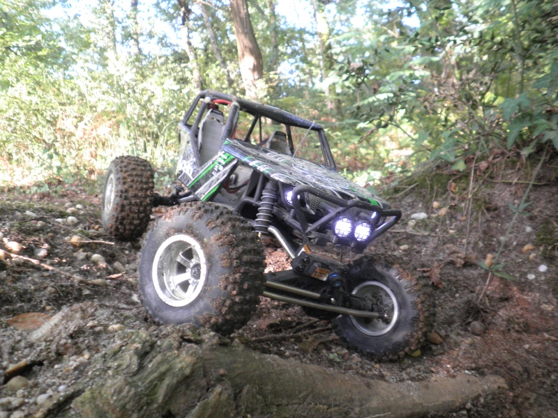 axial Wraith - Page 6 P9020014