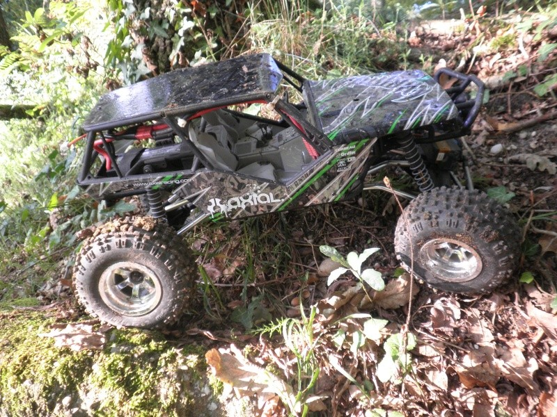 axial Wraith - Page 6 P9020015