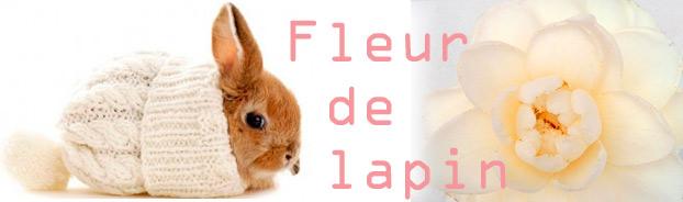 Fleur de lapin