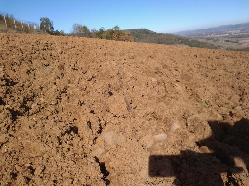 Un petit bout d'Auvergne Photo028