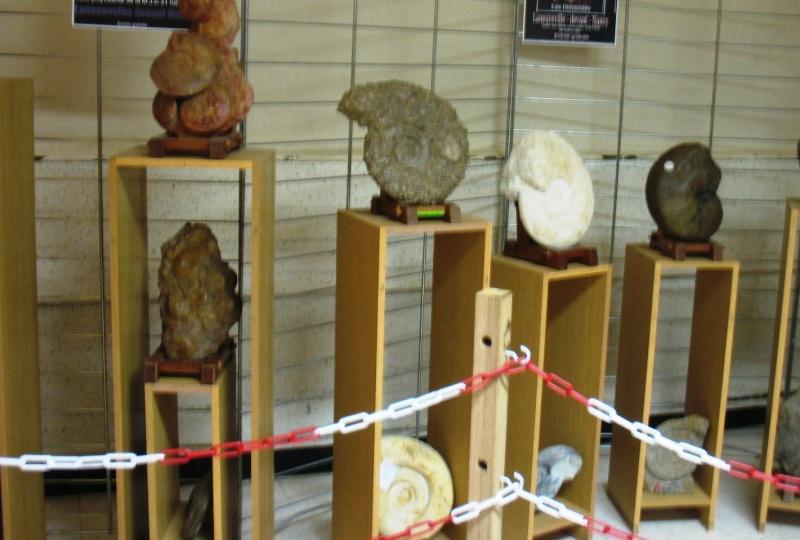 PETITE EXPOSITION  SYMPA  A  LANEUVEVILLE DEVANT  NANCY  (54  ) Exposi14