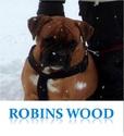recrutement Robins wood Sans_t15