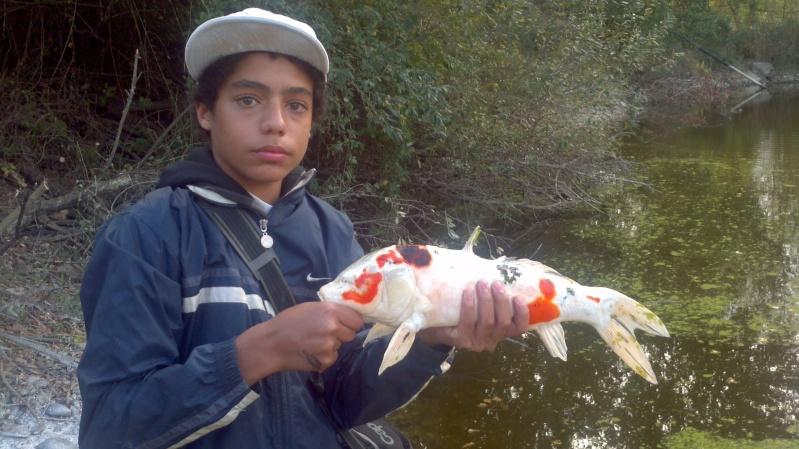Votre pêche carna de Novembre 2011-118
