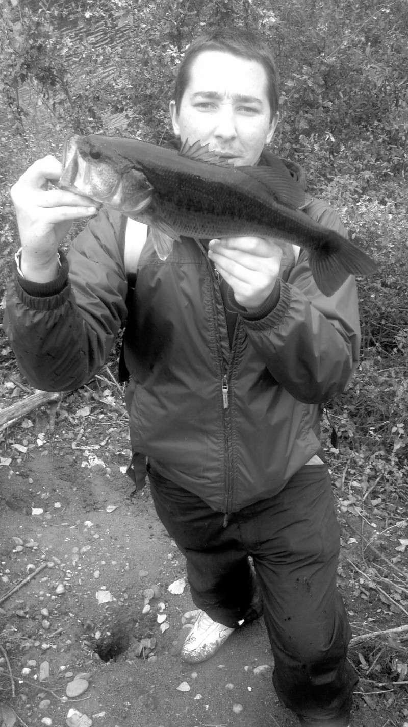Votre pêche carna de Novembre 2011-120