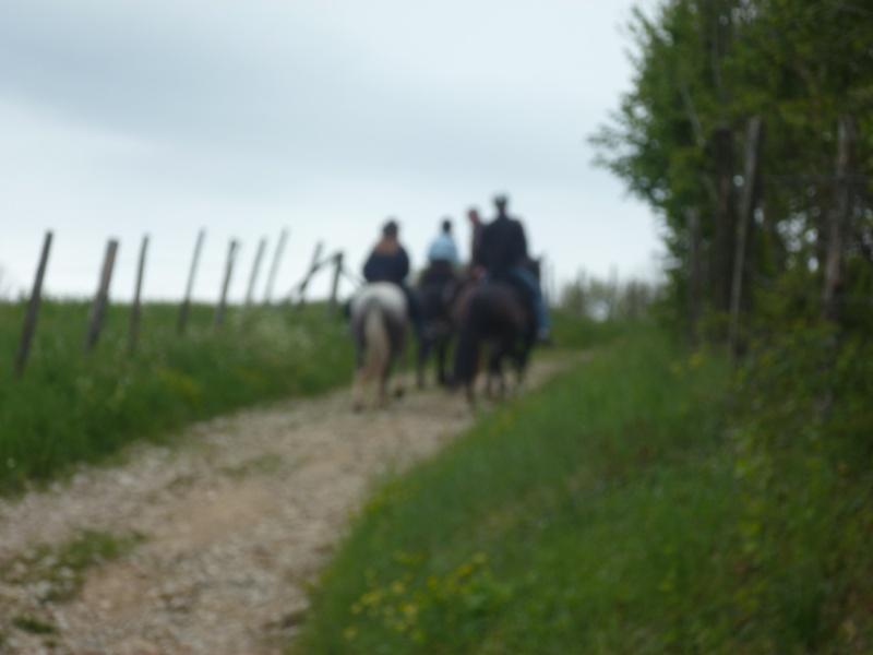 Mardi 8 Mai, La premiére rando des crêtes 2012 / sportive / BEAUCROISSANT P1050916