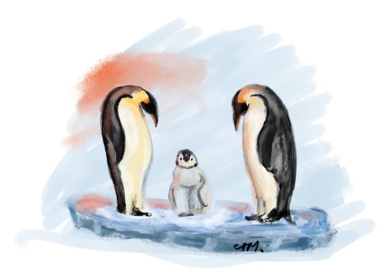 [Thème permanent] nos amis les bêtes Pingou11