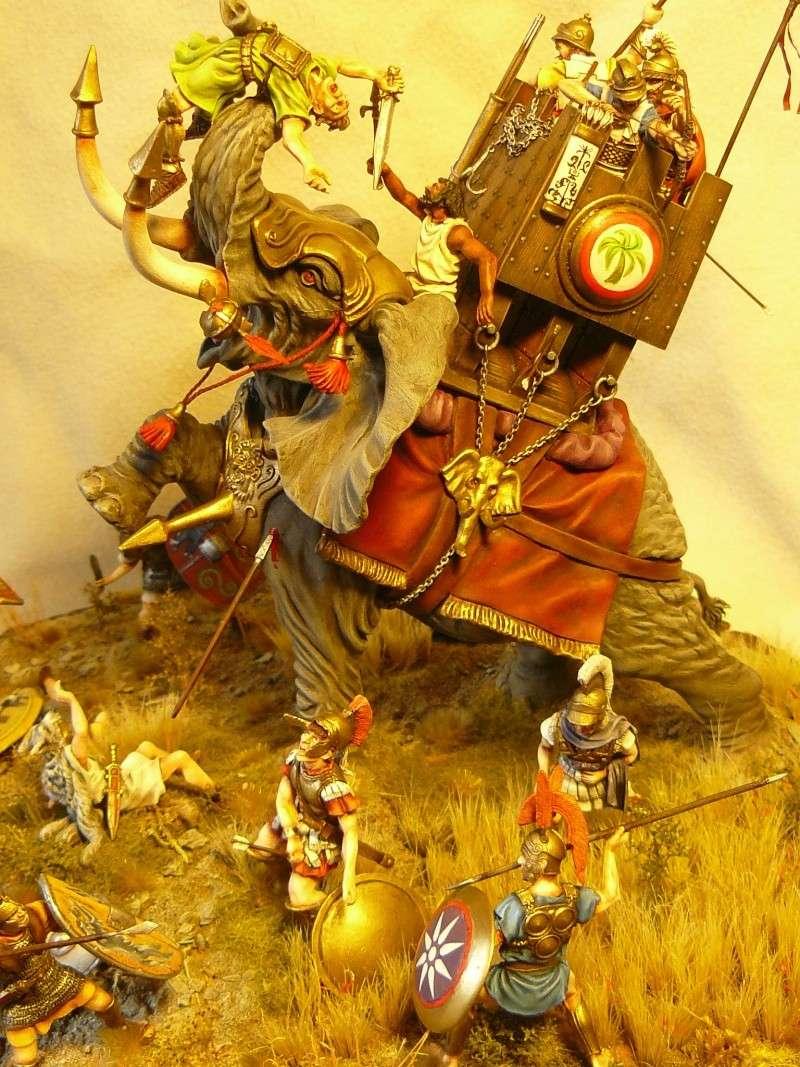 éléphant de guerre carthaginois P1040615