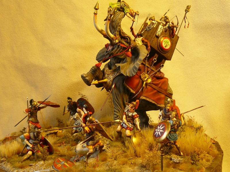 créer un forum : maquettes club le sapeur - Portail P1040616