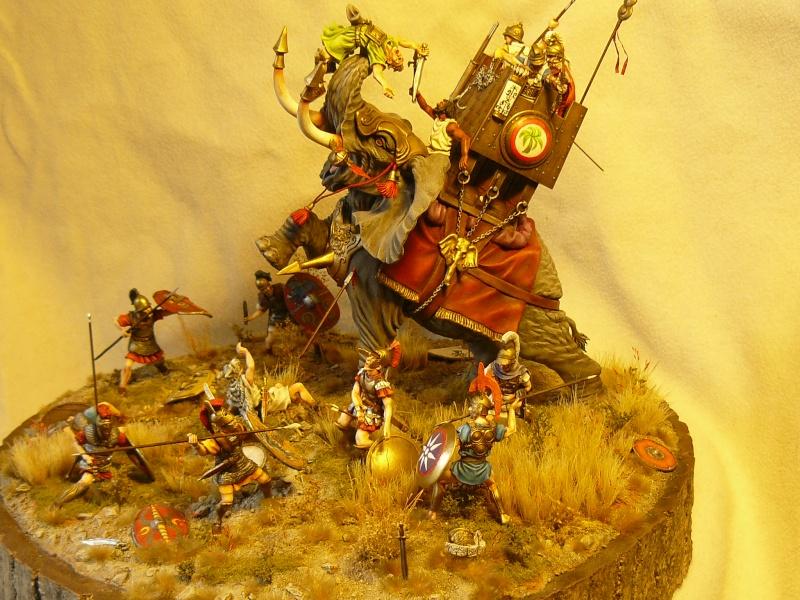 créer un forum : maquettes club le sapeur - Portail P1040617