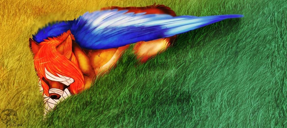 I'll raise u like a phoenix ! ~ Kasai 44363110