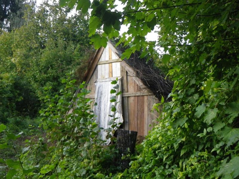 [DIY] Maison Viking Imgp0216