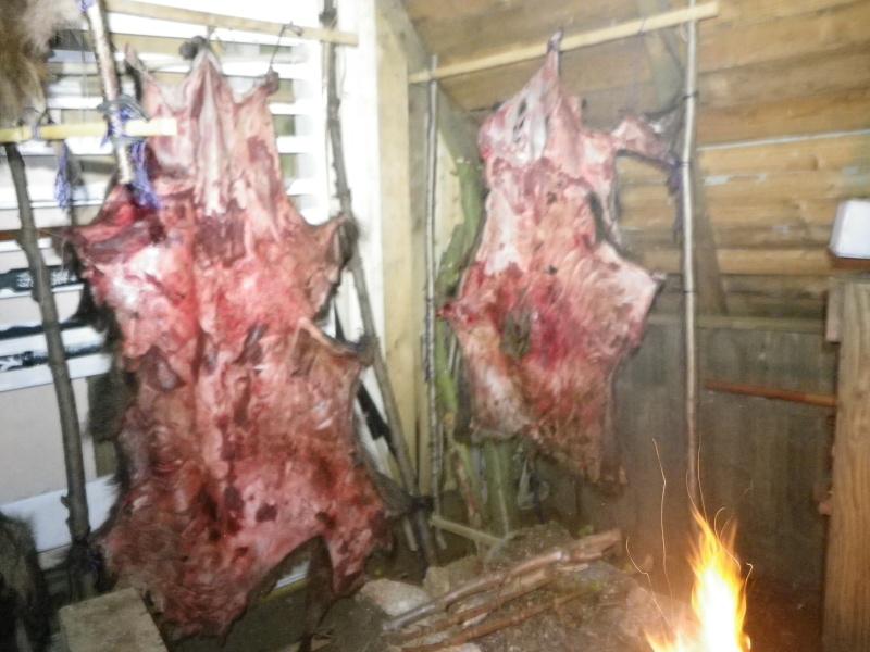 [tannage] demande de conseil pour peaux de sanglier, chevreuil ou lapin Imgp0322