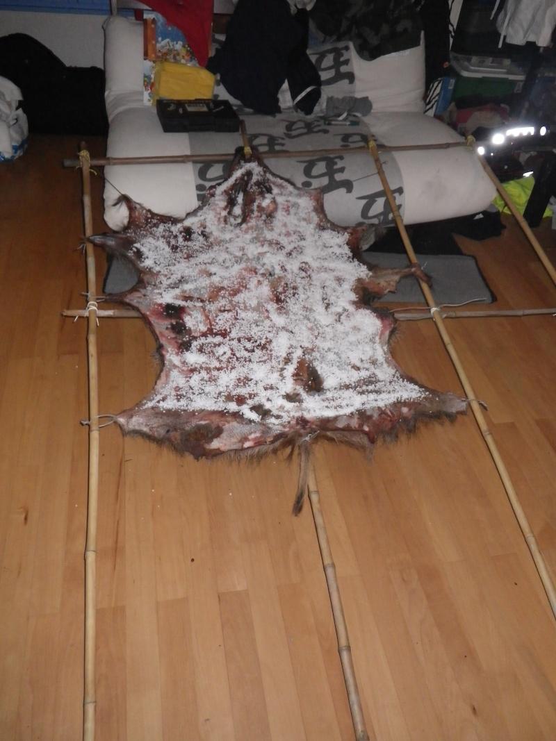[tannage] demande de conseil pour peaux de sanglier, chevreuil ou lapin Imgp0413