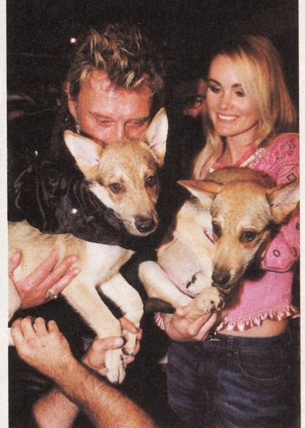 """Johnny et les """"z'animaux"""" - Page 5 Chien110"""