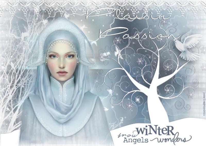 Vote pour la déco de cette hiver 3acraa12
