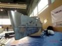 3 -> 4 marzo 2012, 8° MODEL EXPO ITALY (Verona)  Cimg3912