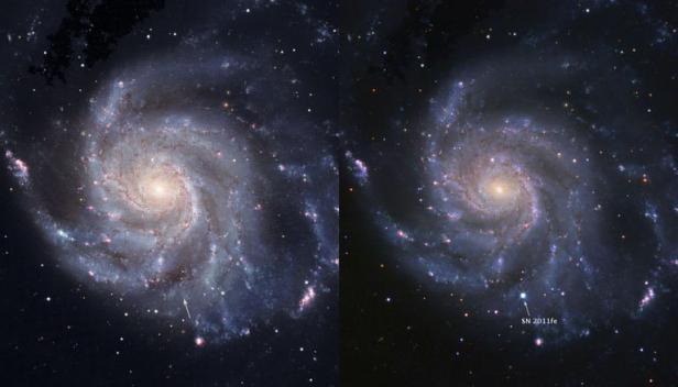 Une Supernova observée en direct Articl10
