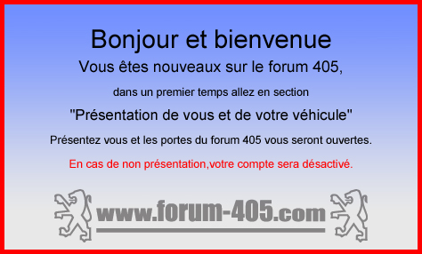 NOTICE D'UTILISATION DE LA PEUGEOT 405 Phase 1 (1988). Pop10