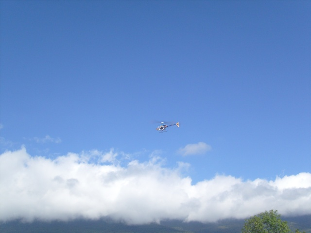 LAMA - photos de nos hélicos en vol S7300210