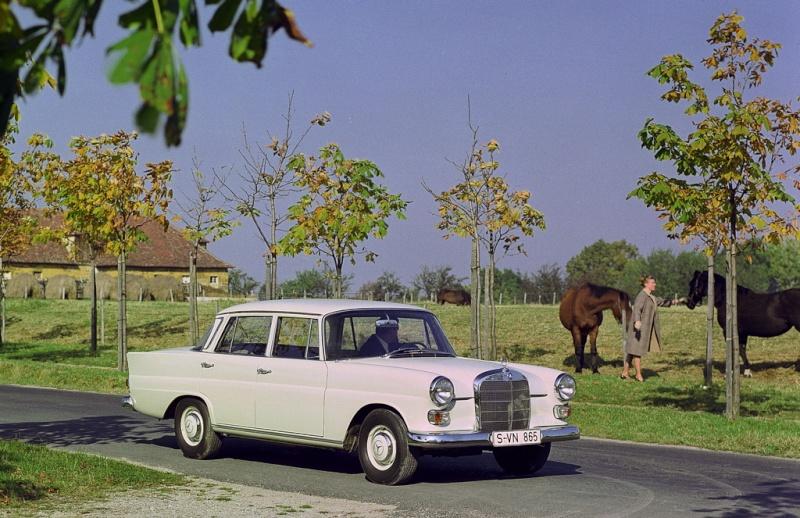 "[Historique] La Mercedes-Benz W110 ""Kleine Heckflosse"" 1961 - 1968 05_hec11"