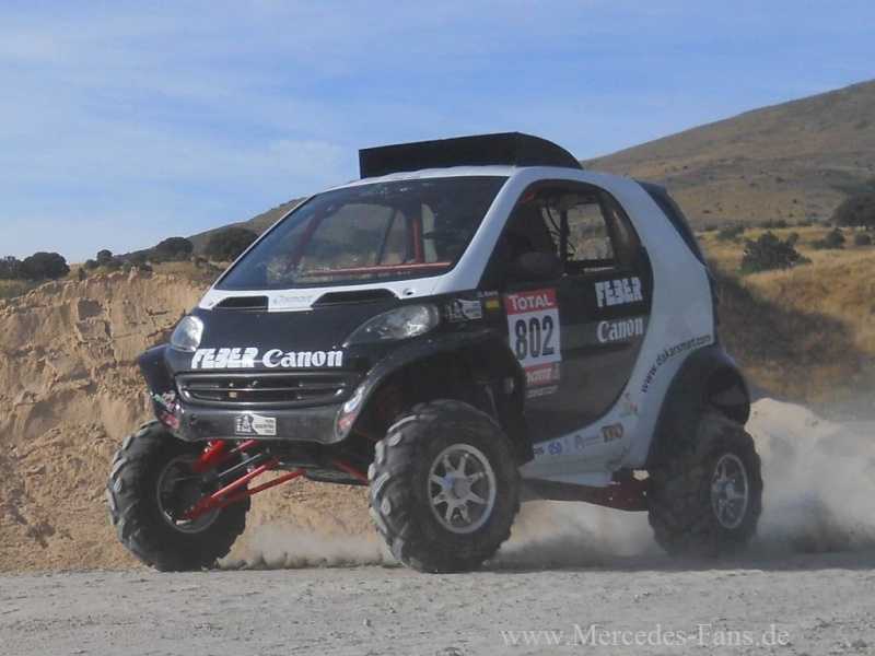 Smart FEBER Rallye Dakar (2013) Smart-29
