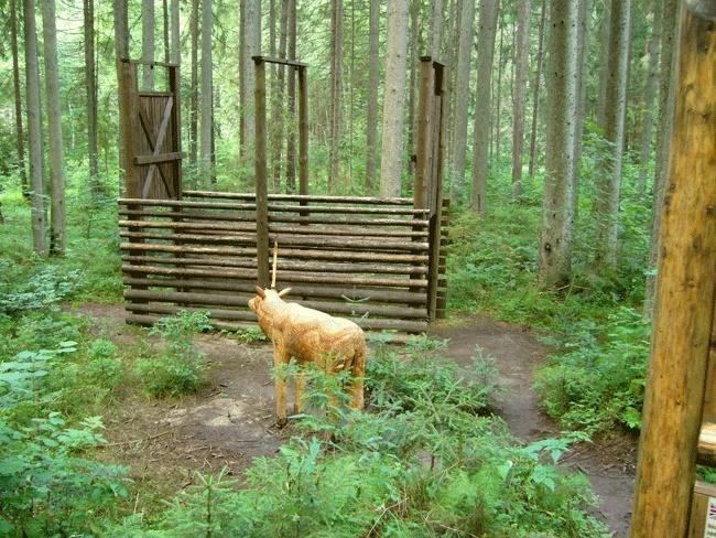 Lesnícky skanzen - Vydrovská dolina (Čierny Balog) P1210113