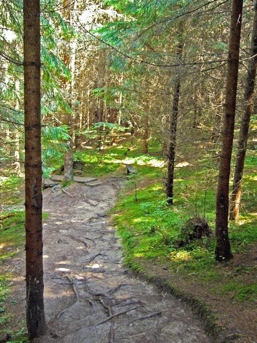 Lesnícky skanzen - Vydrovská dolina (Čierny Balog) P1210116