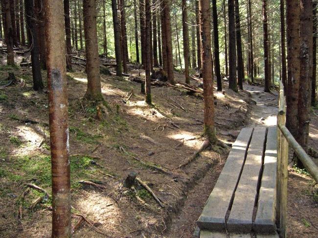 Lesnícky skanzen - Vydrovská dolina (Čierny Balog) P1210117