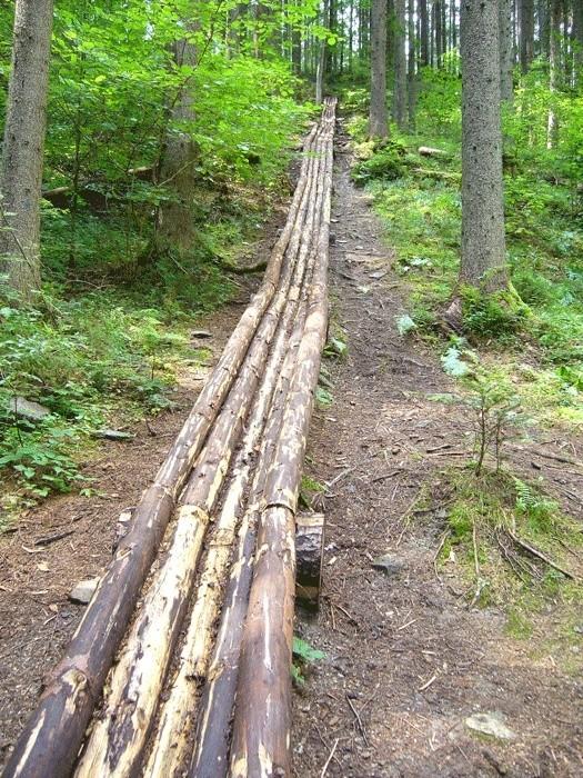 Lesnícky skanzen - Vydrovská dolina (Čierny Balog) P1210212