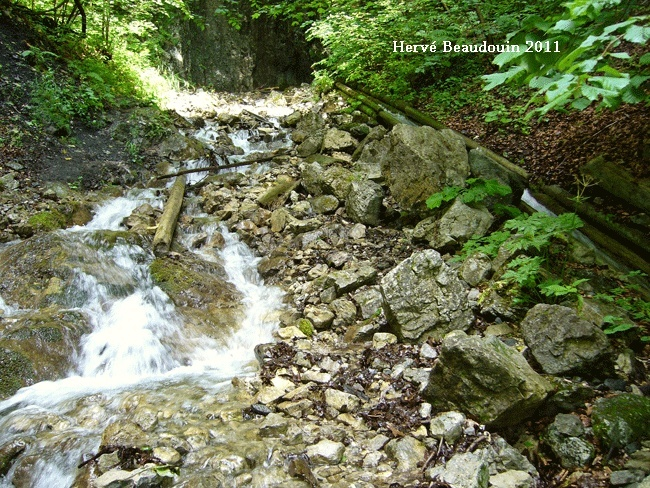 Vodný žľab, à Rakytovo (Slovaquie) P1210316