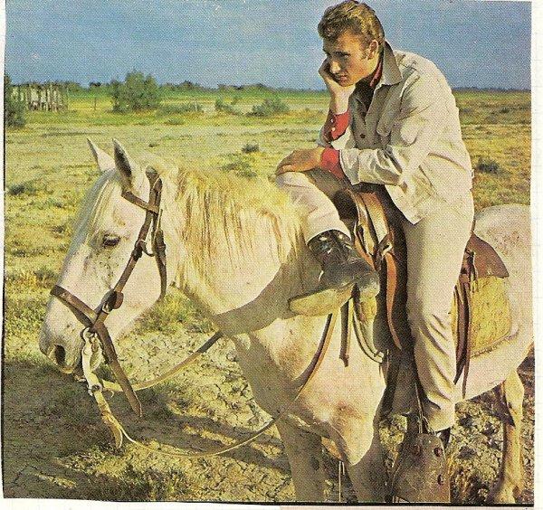 """Johnny et les """"z'animaux"""" - Page 6 22814210"""