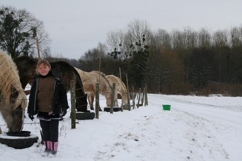 Nouveau concours photos ! La neige, vous, vos chevaux ! Dac09_10