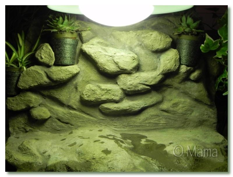 Confection d'une plage flottante (EPS + mortier hydrofuge) - Page 2 Plgfin21